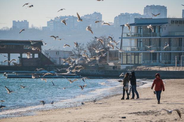 Погода в Одессе, фото: Думская