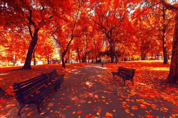 """Осень, фото: """"То є Львів"""""""