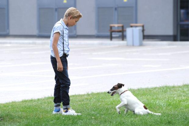 Появился трейлер нашумевшего украинского фильма для всей семьи: собака-супергерой и нанотехнологии