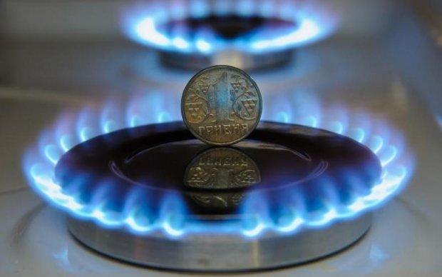 Время переходить на дрова: как вырастут цены на газ