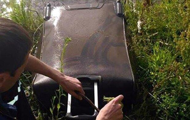 У Франківську розслідують звіряче вбивство студентки - понівечений труп знайшли у валізі в озері