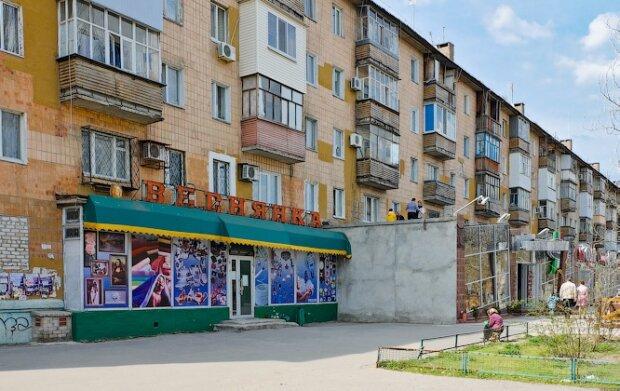 """Яйца - на вес золота: в Мелитополе во дворе многоэтажки """"пасутся"""" куры"""