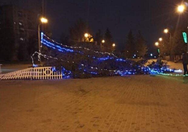 У Тернополі впала ялинка, фото: Facebook Тернопільські плити