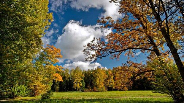 Погода на 21 сентября: солнце согреет украинцам щеки