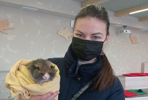 фото: Центр поводження з тваринами