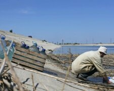 Засуха в Крыму, 24tv