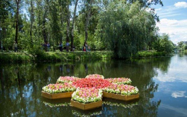 И красиво, и полезно: в Киеве прошел необычный фестиваль