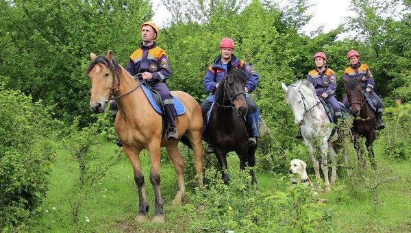 Если вам понадобится помощь: на видео показали коня-МЧСника и стало по-настоящему страшно