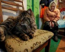 Українські пенсіонери, фото: REUTERS