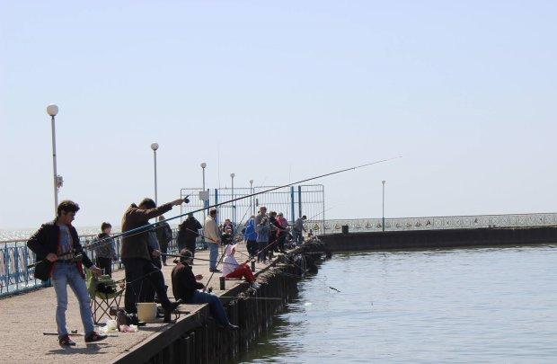 Головастое чудовище паразитирует на реках Украины, рыбаки такого еще не видели: редкие кадры