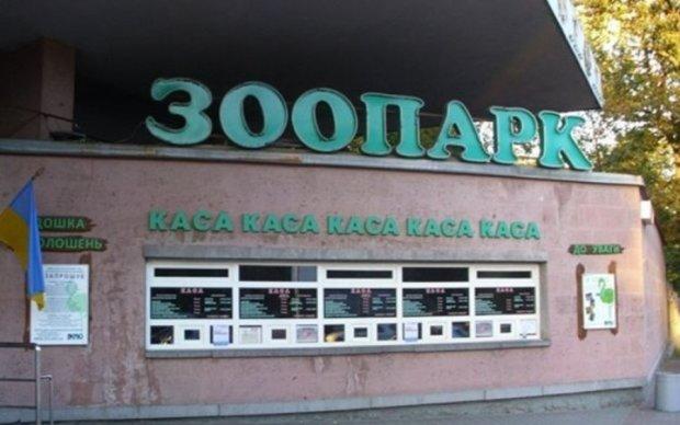 Билет в киевский зоопарк заменит банковская карта