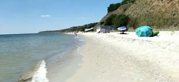 Азовское море атаковали полчища медуз - жалят больнее крапивы