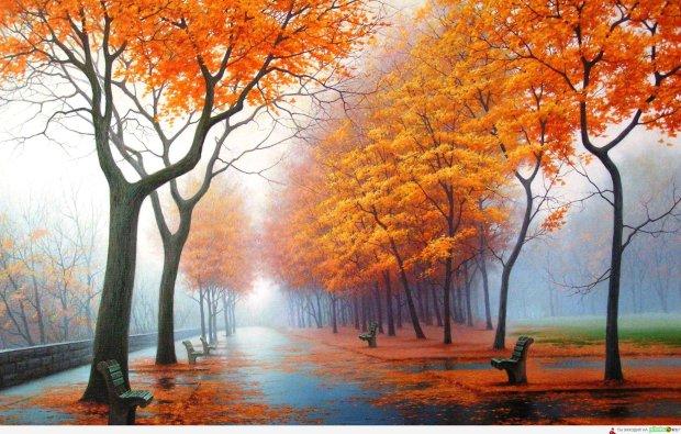 Погода на 9 листопада: синоптик розповіла, коли зіпсується погода