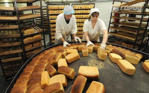 Таргани, цвіль і болти: українцям показали, як випікають духмяний хліб