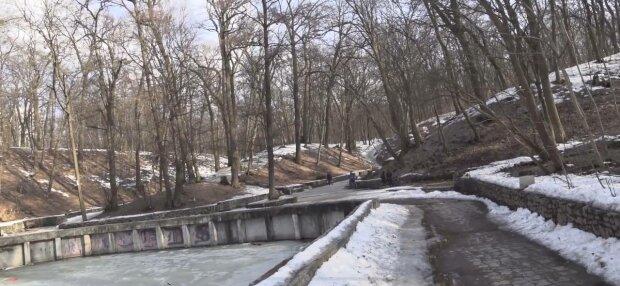 Парк Нивки, фото: скріншот з відео