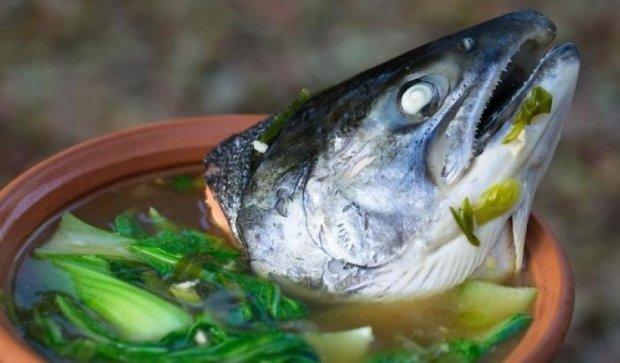 Як алкоголь «оживив» приготовлену рибу (відео)