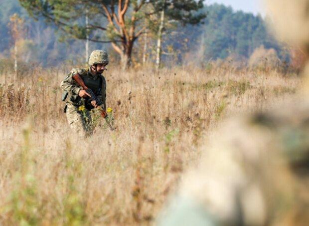 Офіцери НАТО оцінили тренування українських військових: видовищні кадри