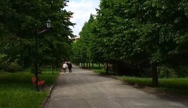 Не парк, а кладовище: тернополян не на жарт налякали клумби-надгробки