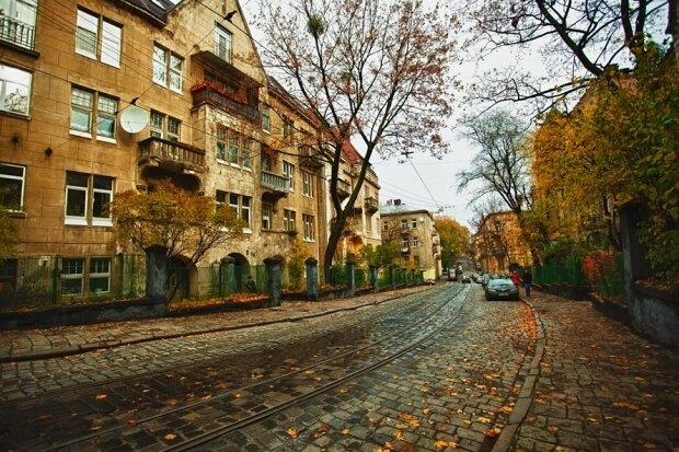 Осінь станцює у Львові прощальне танго: синоптики дали шикарний прогноз на 29 листопада