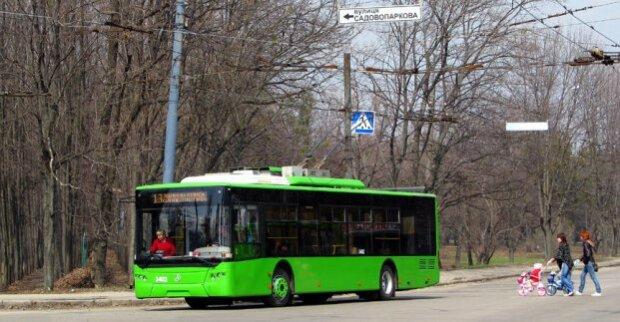 Службовий роман: у Харкові водій освідчився кондукторці просто в тролейбусі, зворушливе відео