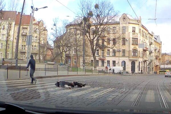 Во Львове неадекват посреди улицы избил женщину с собачкой: дикая выходка попала на видео