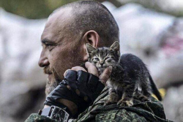 Українські військові з котами, фото: Соцмережі