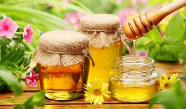 Україна стала лідером з експорту меду в Європі