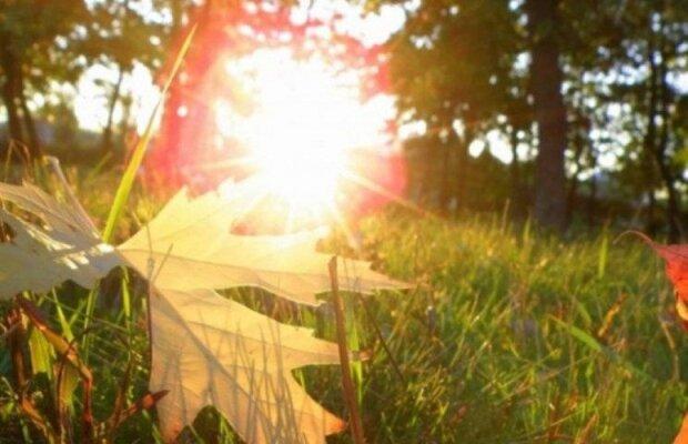 Львiв вiдсвяткує День прапора під сонцем: синоптики порадували теплим прогнозом на 23 серпня