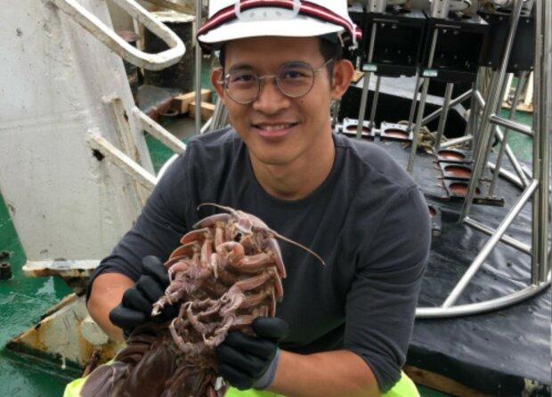 Морской таракан, фото: https://www.india.com/