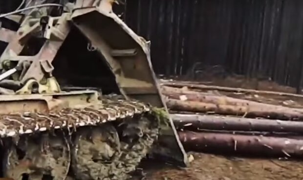 """Тернополянина с топором убило рухнувшее дерево – """"Лес отомстил…"""""""
