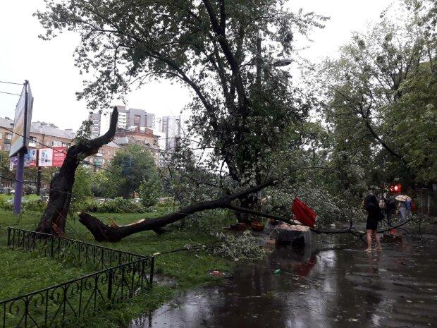 Держите шляпы: на Киев надвигается свирепая стихия, синоптики сделали экстренное предупреждение