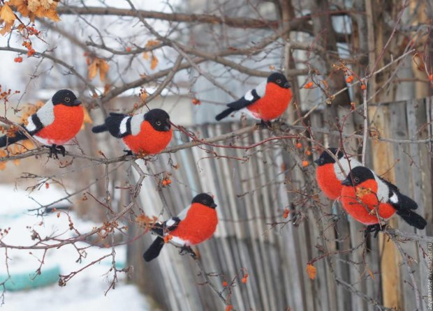 В Москве птицы-алкоголики ушли в зимний запой: кутежат и спят где попало