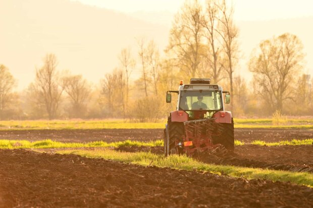Ринок землі в Україні, фото: lexinform.com.ua