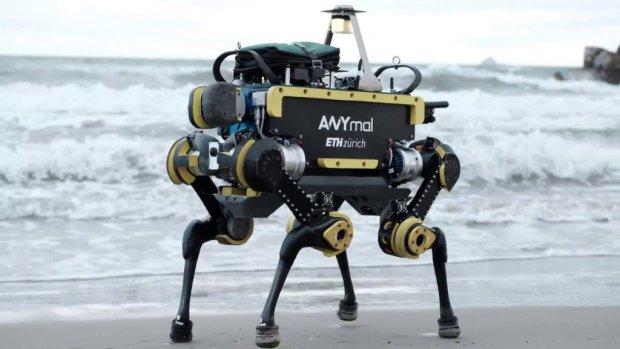 Ученые представили четвероного робота-очаровашку, который займется грязной работой: видео