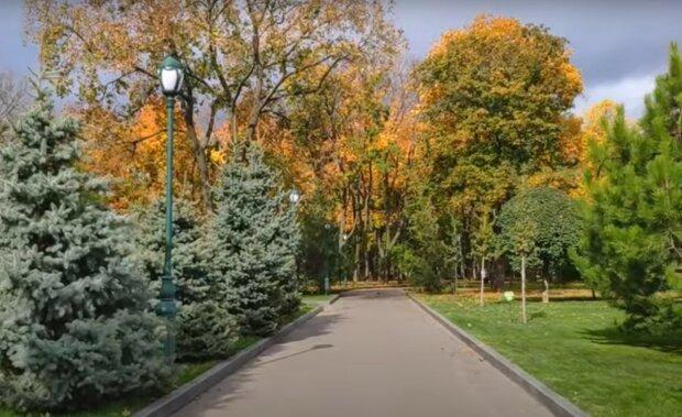 """Українців відвідає бабине літо, синоптик порадувала прогнозом: """"До +20"""""""