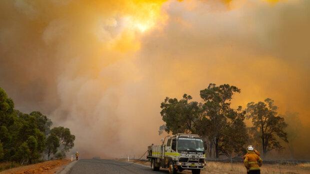 """В Австралии горит """"апокалиптическая"""" лесной пожар, стихия выгоняет людей из домов"""