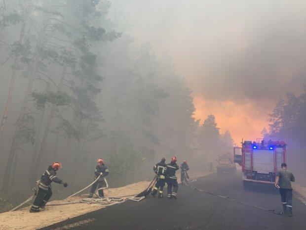 лісова пожежа на Луганщині, фото:  ГСЧС