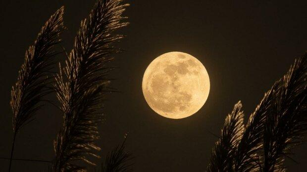 Лунный календарь, фото: 24 канал