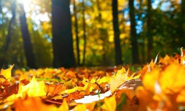 Франківці, теплий вікенд продовжується: 20 жовтня сонце вшкварить на повну