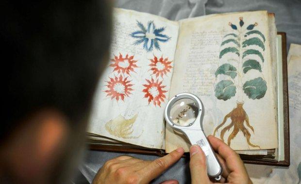 Банановый, хаттский и другие мертвые языки, которые до сих пор остаются не расшифрованными: умерли с последним носителем