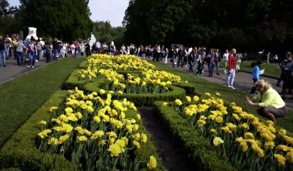 Ботанічний сад, скріншот