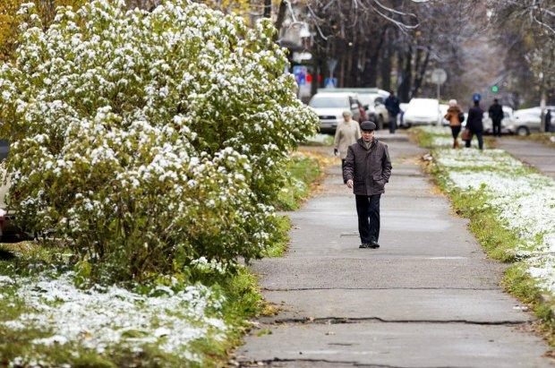 Снега и морозы мчатся в Украину: прогноз погоды на ноябрь