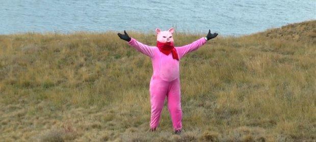 Директор одесского зоопарка в костюме свиньи порвал YouTube
