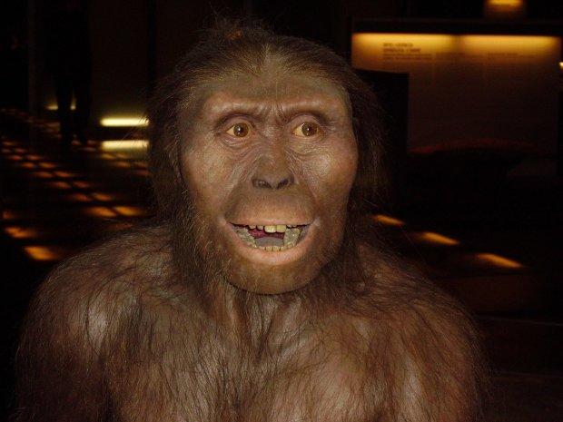 Мільйони років еволюції: вчені розповіли про головні зміни людини