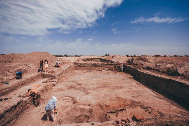 Археологи знайшли унікальні прадавні скам'янілості: найважливіше відкриття за останні 100 років
