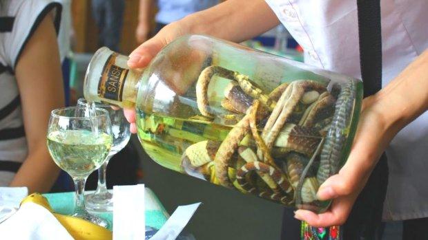 """Мертвые чайки, скорпионы и мышата: какой алкоголь предпочитают """"гурманы"""" в разных странах мира"""