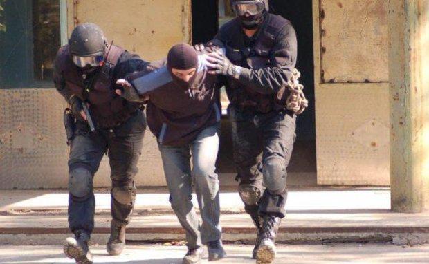Величезна теплиця і налагоджений конвеєр: у Києві схопили хіміків-аматорів