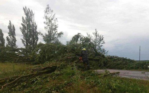 Ровненщиной пронесся мощный ураган: заблокировано километры дорог