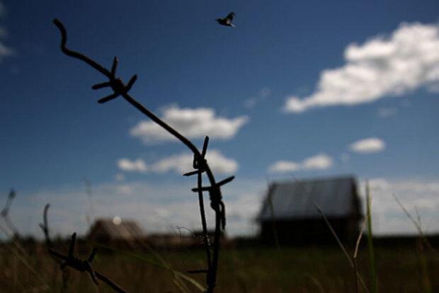 Трудовой лагерь, фото: newsland.com