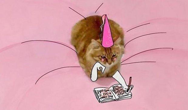 Що відбувається у голові рудої кішки (фото)